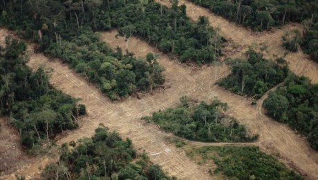 Aerial view over the rainforest showing transect deforestation, Manaus, Amazonas, Brazil.
